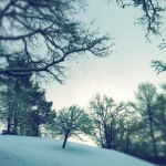 Winterwunderland im Fünfseenland