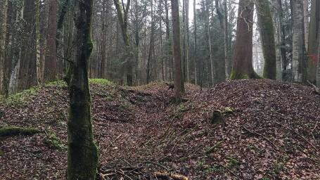 Suche nach alten Kalkbrennöfen in den Wäldern rund um Seeshaupt. Eine spannende Sache bei der man genau hinsehen muss